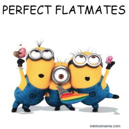 perfect-flatmates